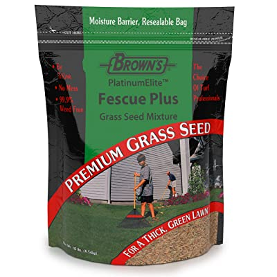F.M. Brown's Premium Grass Seed Green Turf Fescue Plus Mixture, 10lb : Garden & Outdoor
