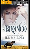 Bronco: A Contemporary Cowboy Romance (Contemporary Standalone Romances Book 1)