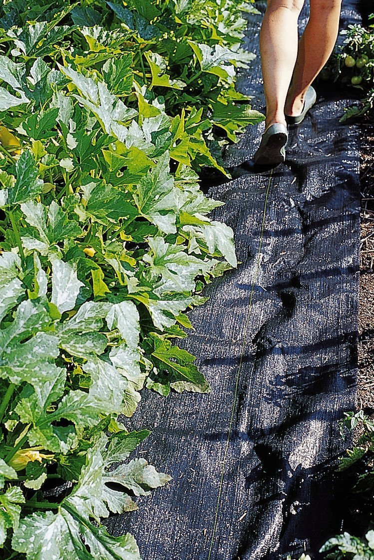 Pro 5 Ounce Weed Barrier - Weed Control Landscape Fabric - Woven Geotextile Fabric - Erosion Control Mulch Mat - Garden Ground Cover Fabric - 6Ft X 250Ft Black by UNI-SOURCE-TEXTILE (Image #7)