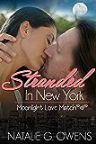 Stranded in New York (Moonlight Love Match Book 3)