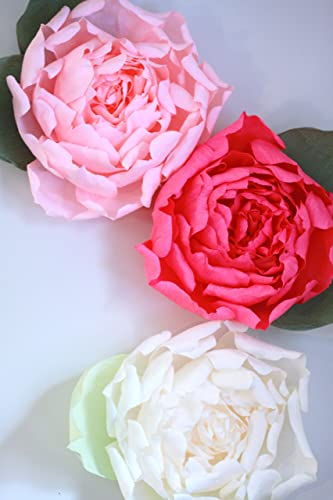 Amazon set of 3 giant paper flowers huge paper peony wall set of 3 giant paper flowers huge paper peony wall display mightylinksfo