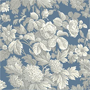York Wallcoverings French Antique Floral Removable Wallpaper Wedgwood Blue Gray White Wedgewood Amazon Com