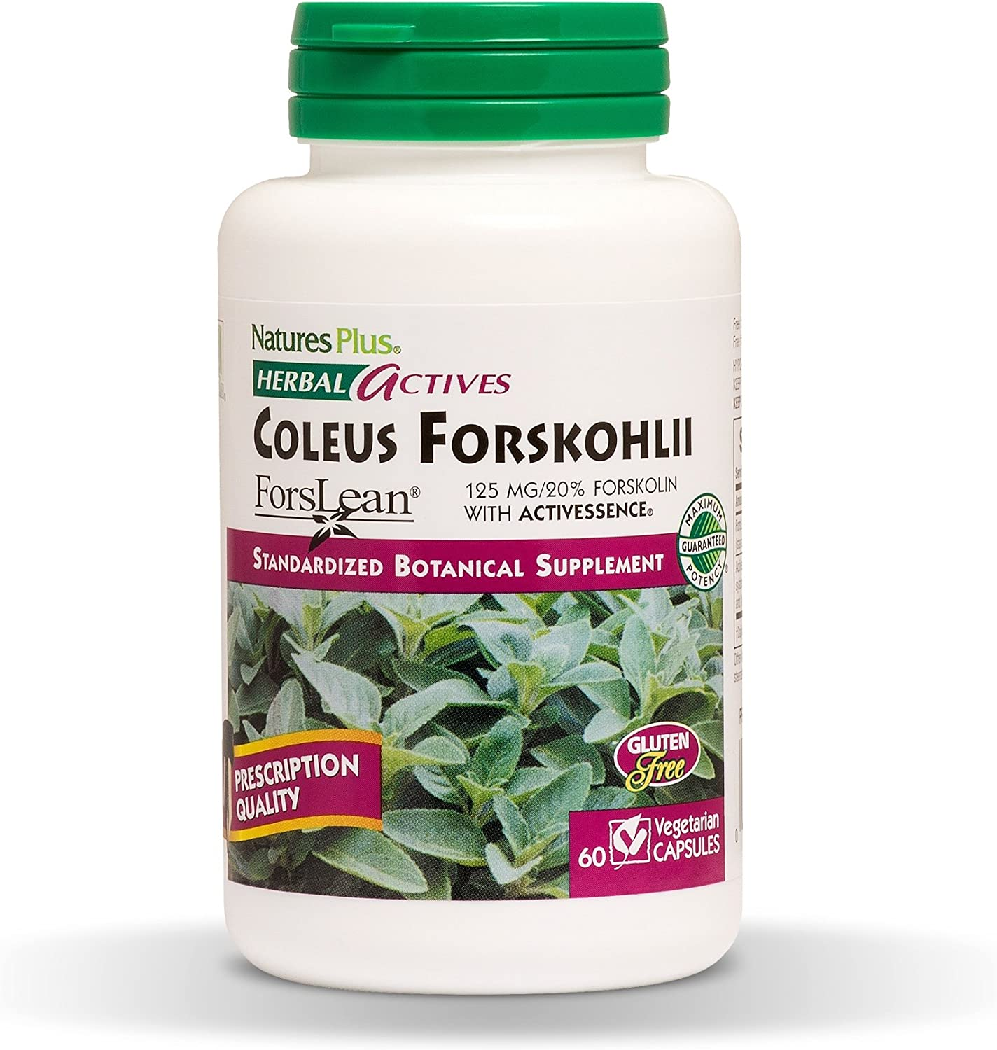 NaturesPlus Herbal Actives Coleus Forskohlii – 125 mg, 60 Vegan Capsules – Heart Support Supplement, Supports Healthy Metabolism – Vegetarian, Gluten-Free – 60 Servings
