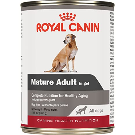 Royal Canin Canine Health Nutrition Mature Adult In Gel Wet Dog Food, 13.5 oz,