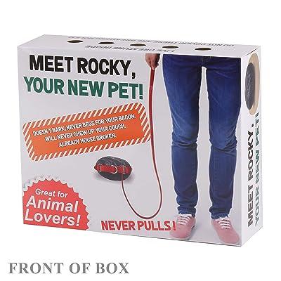 FOLE Prank Gift Box Pet Rocky: Toys & Games [5Bkhe0406331]
