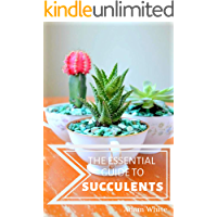 The Essential Guide To Succulents