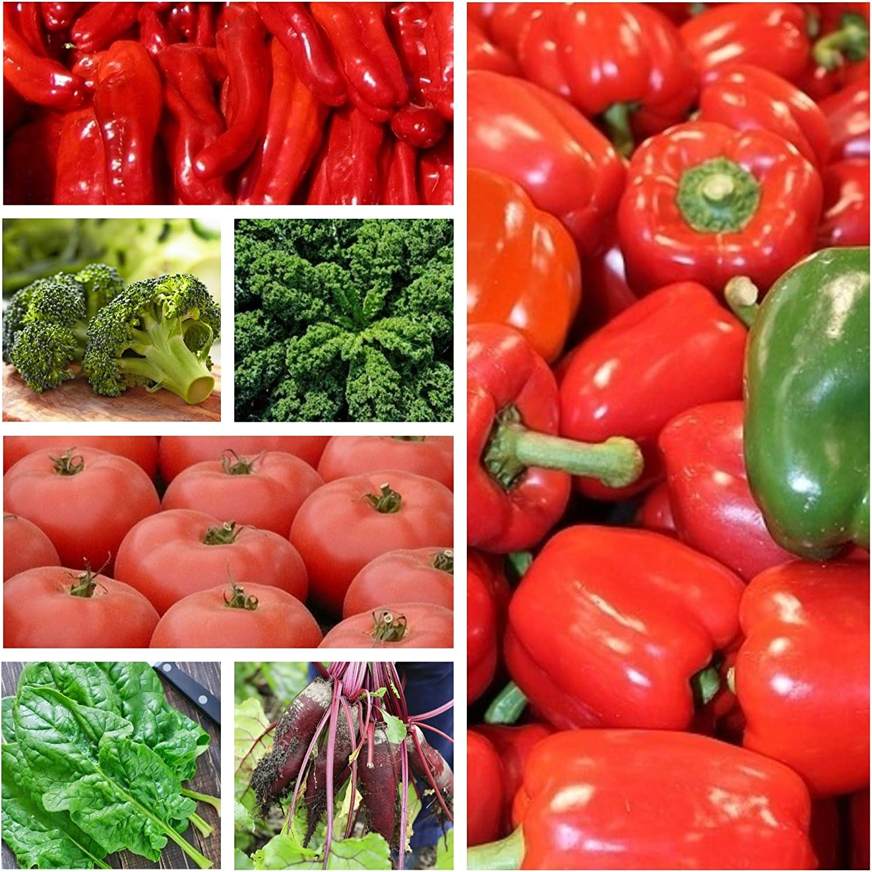 Verduras que apoyan la dieta saludable - Conjunto de semillas de 7 ...