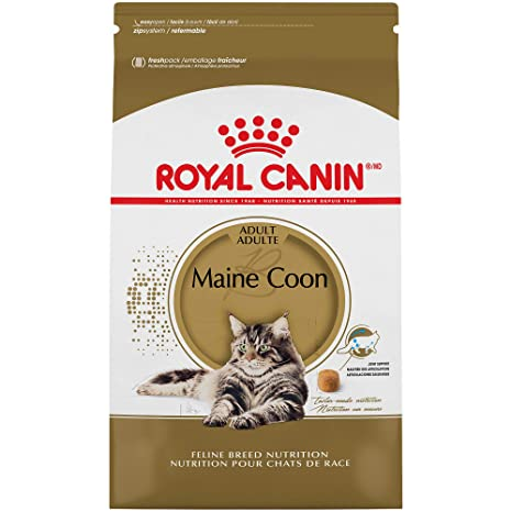 Royal Canin Maine Coon Breed Adult Dry Cat Food