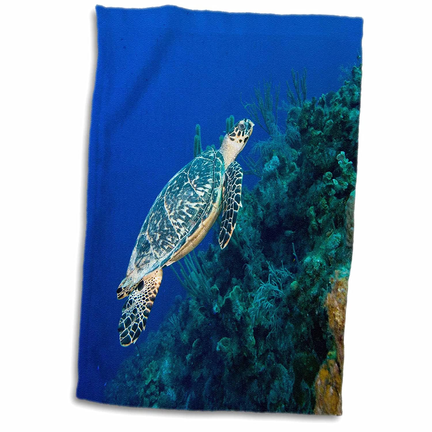 3D Rose Cayman Islands-Hawksbill Sea Turtle and Coral Reef-Ca42 Pso0091-Paul Souders Hand//Sports Towel 15 x 22