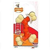 Nylabone Double Bone Power Chew Long-Lasting Dog Toy
