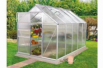 Vitavia Gewachshaus Calypso 7300 Hkp 6 Mm Alu Amazon De Garten