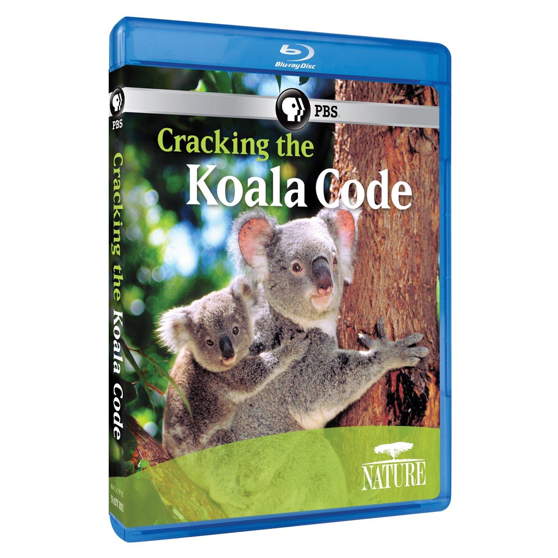 Blu-ray : Nature: Cracking The Koala Code (Blu-ray)