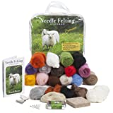 Premium Needle Felting Kit for Beginners, 20 Colors Wool, Pure Wool Felting Pad, 6 Needles Various Sizes, Leather Finger Guards, Storage Case