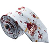 Floral Paisely Ties for Men - Cool Mens Neckties - Many Colors to Choose From