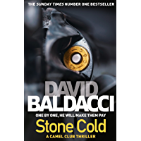 Stone Cold: The Camel Club Book 3
