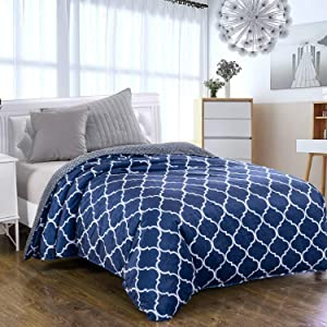 Royhom Duvet Cover for Weighted Blankets 48 x 72 Inches - Removable Weighted Blanket Cover - Soft Minky Dot, Printed Blue