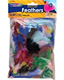 Creativity Street Turkey Plumage Feathers, Assorted Bright Hues, 0.5-oz. (AC4500-01)