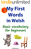 My First Words in Welsh: Basic vocabulary for beginners (Learn Welsh Book 1) (English Edition)