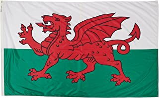 product image for Annin Flagmakers Model 221119 Wales Flag Nylon SolarGuard NYL-Glo, 5x8 ft, 100% Made in USA to Official United Nations Design Specifications