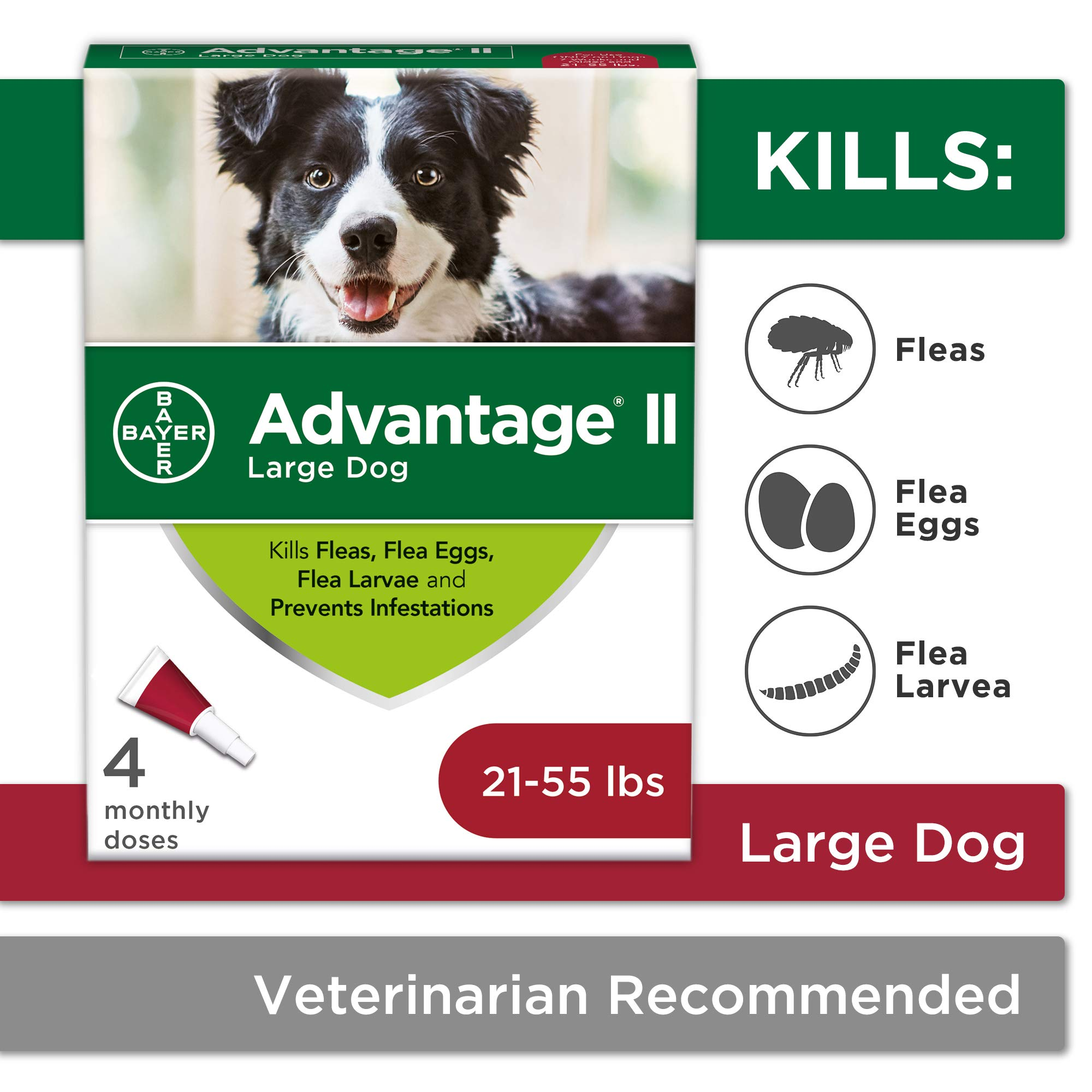 Flea and Lice Treatment for Dogs, 21 - 55 lb, 4 doses, Advantage II by Bayer Animal Health