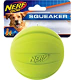 Nerf Dog Squeak Ball, Large
