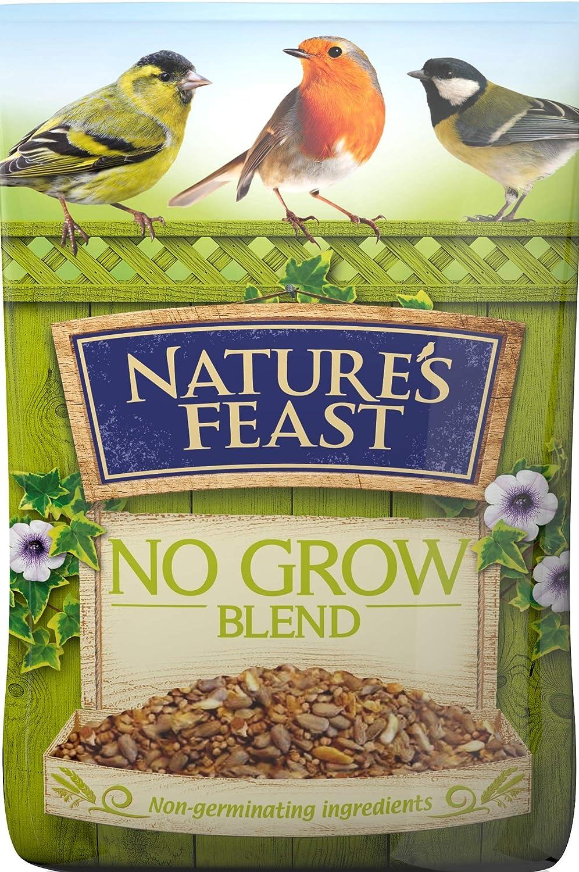 Westlands Horticulture Ltd - Semillas para pájaros
