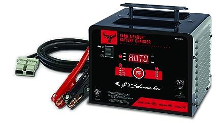 Schumacher cargador de batería: Amazon.es: Coche y moto