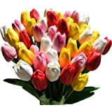 Tulpen beautiful bouquely made of 8 tulips