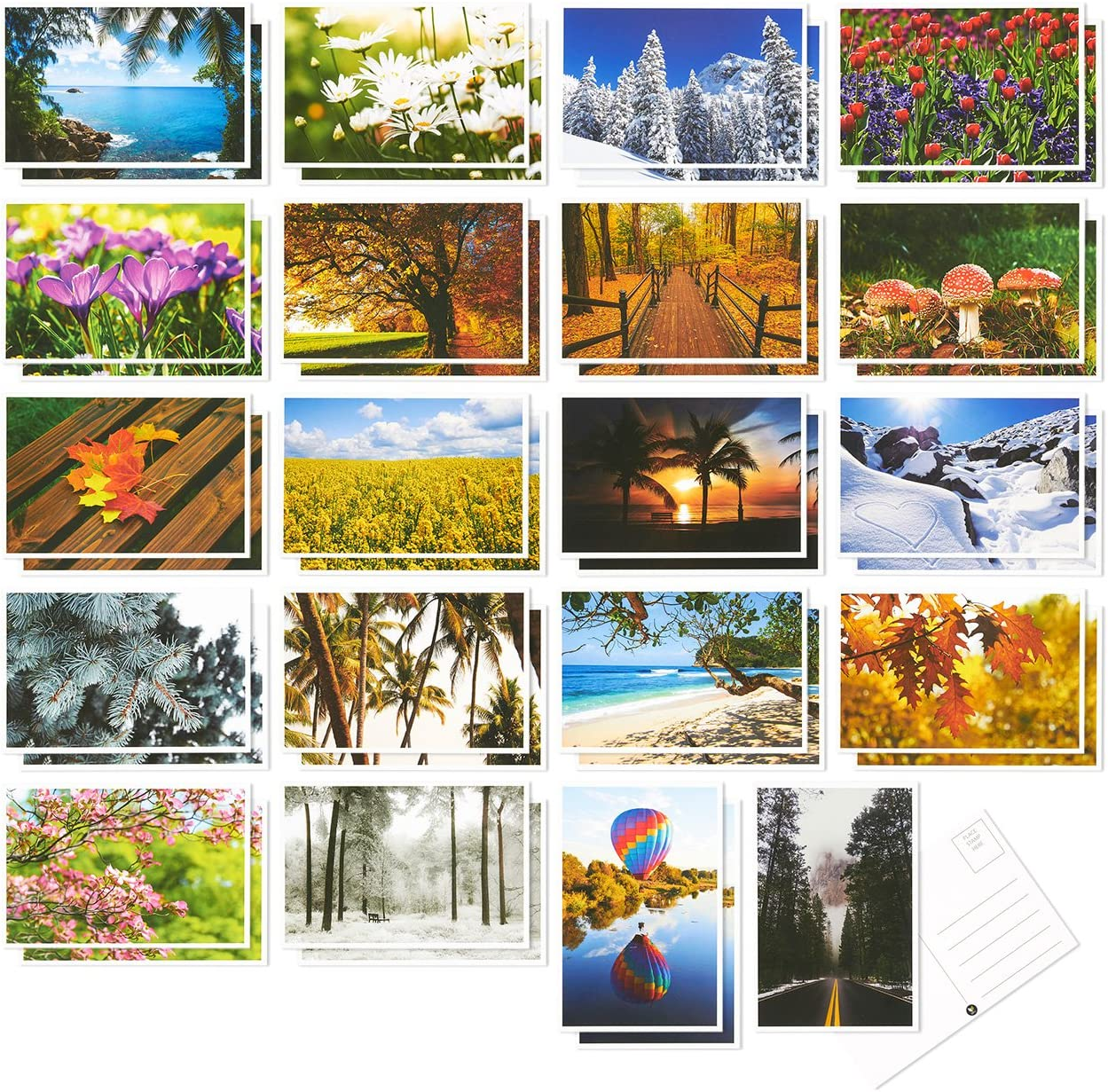 40 Pack Postcards - Four Seasons Postcards Print Variety Pack - Fall, Autumn, Winter, Summer, Spring Theme Self Mailer Postcards with Mailing Side - 20 Picture Designs Postage Saver - 4 x 6 Inches