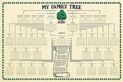 amazon com family tree chart genealogy office products