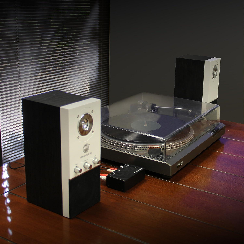 Amazon.com: Mini Turntable Phono preamplificador para ...