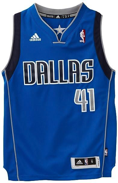 the best attitude 8aed4 8830c Amazon.com : NBA Dallas Mavericks Dirk Nowitzki Swingman ...