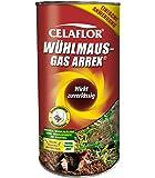 Celaflor Wühlmaus-Gas Arrex 250 g