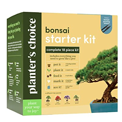 Bonsai Starter Kit - The Complete Growing Kit to Easily Grow 4 Bonsai Trees from Seed + Comprehensive Guide & Bamboo Plant Markers - Unusual Gardening Gifts Ideas for Women - Indoor Bonzai Tree Seeds : Garden & Outdoor
