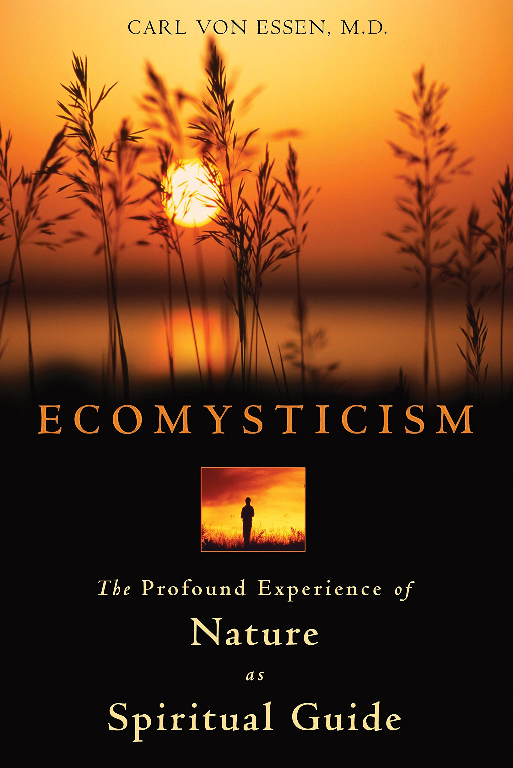 Read Online Ecomysticism: The Profound Experience of Nature as Spiritual Guide PDF