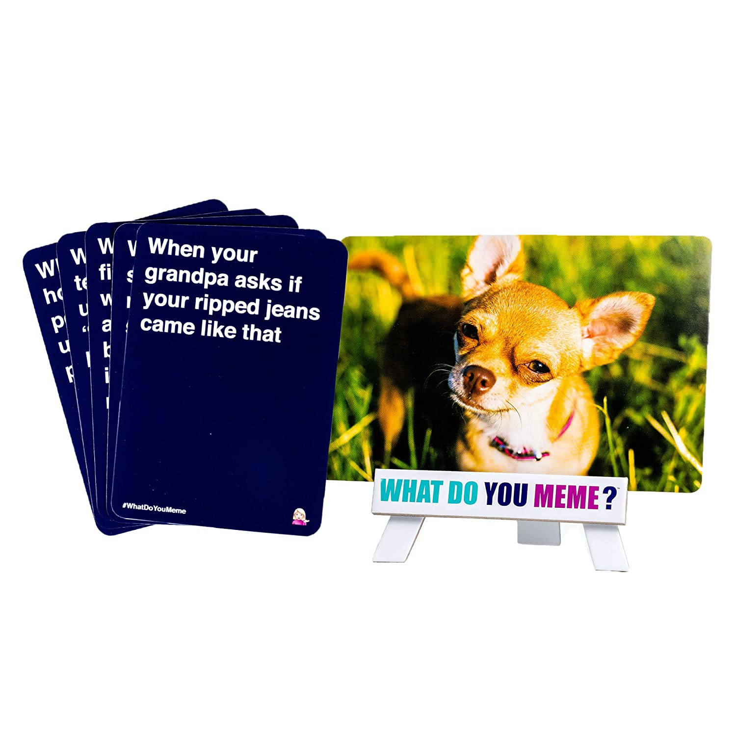 Amazoncom What Do You Meme Basic Bitch Expansion Pack Toys Games