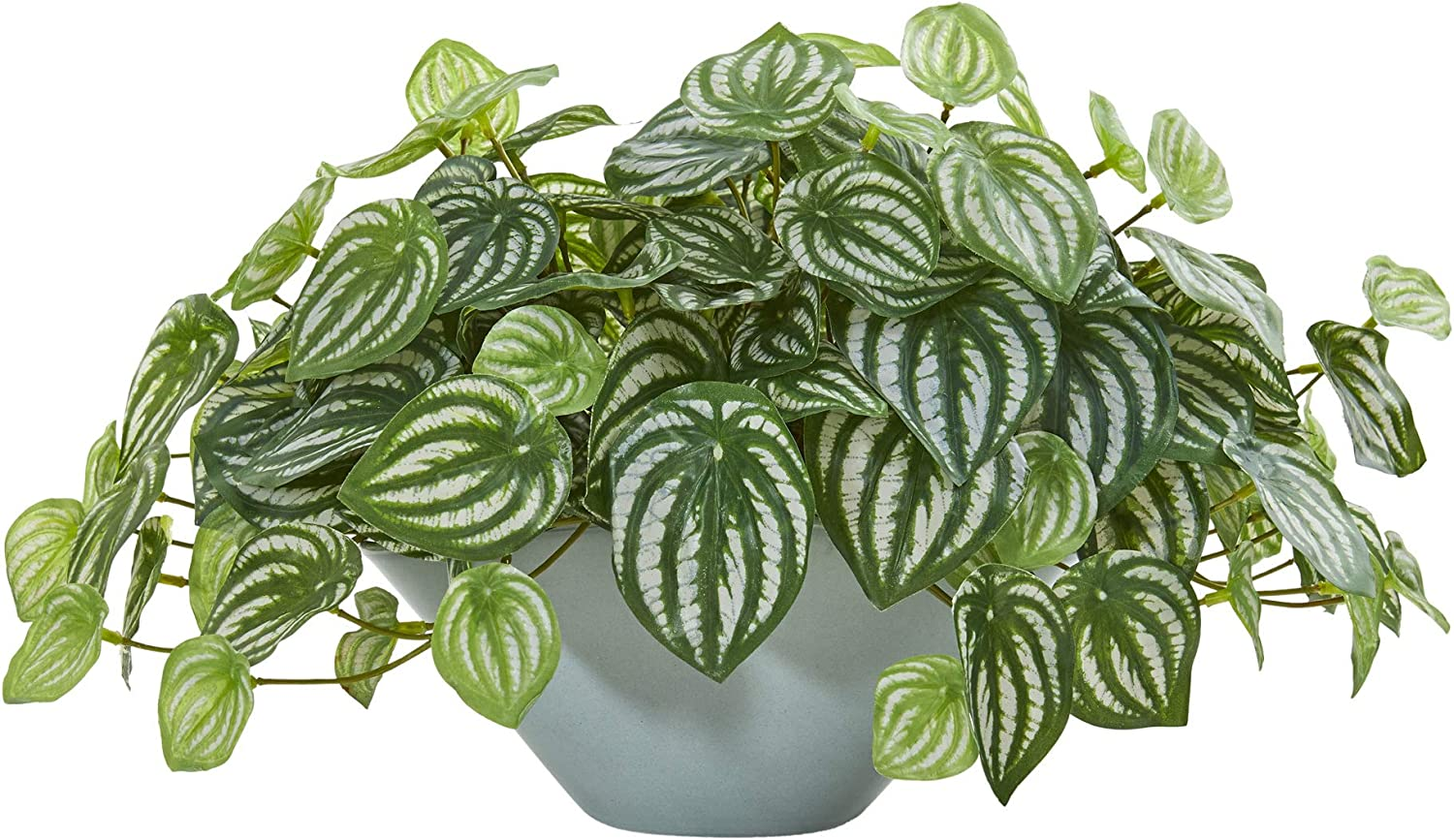 Nearly Natural 19 Watermelon Peperomia Artificial Green Vase Real Touch Silk Plants Furniture Decor