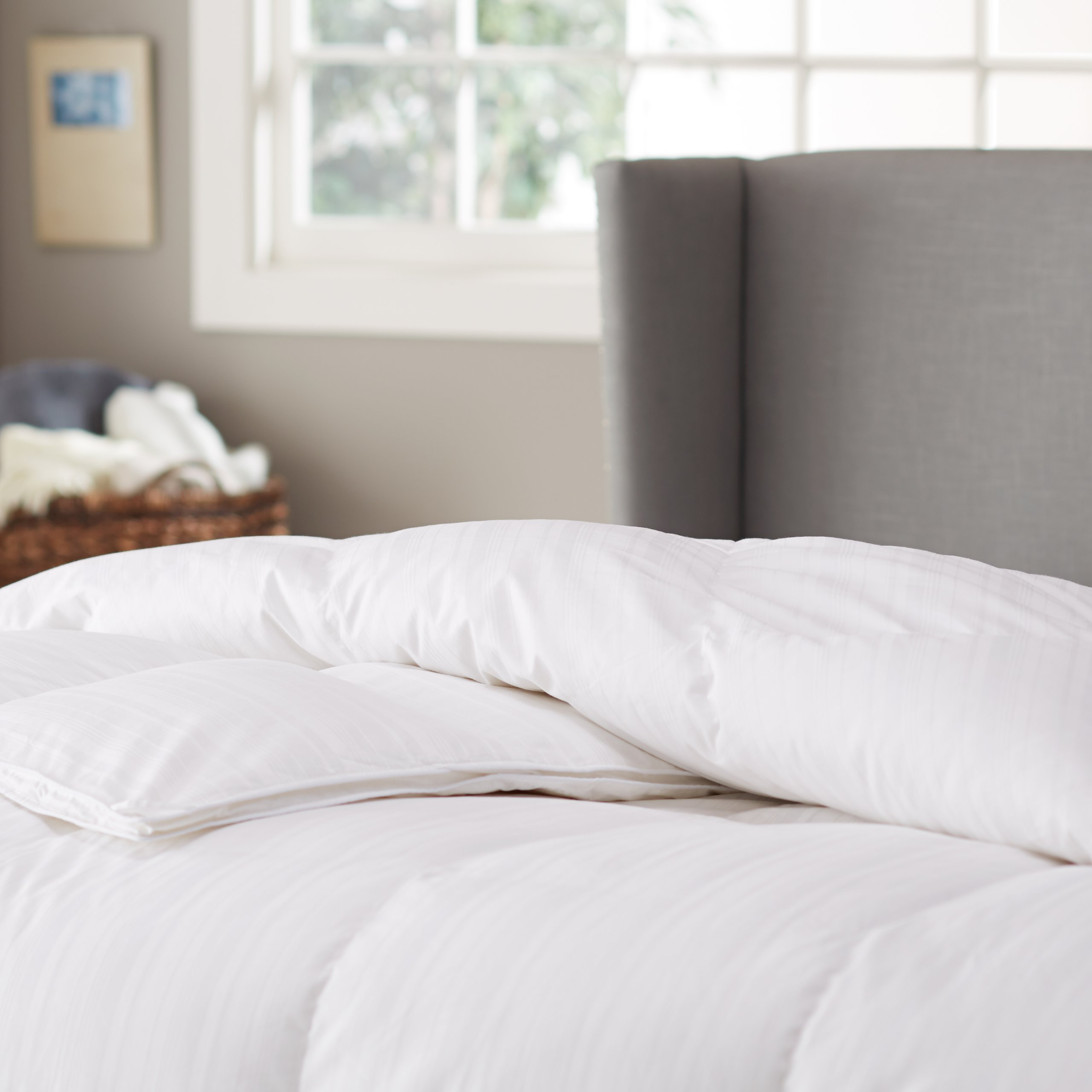 Pinzon Hypoallergenic White Goose Down Feather Comforter, 100% Cotton Cover - Medium Warmth, Full/Queen