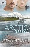 Arctic Sun: A Gay Romance (Frozen Hearts Book 1)