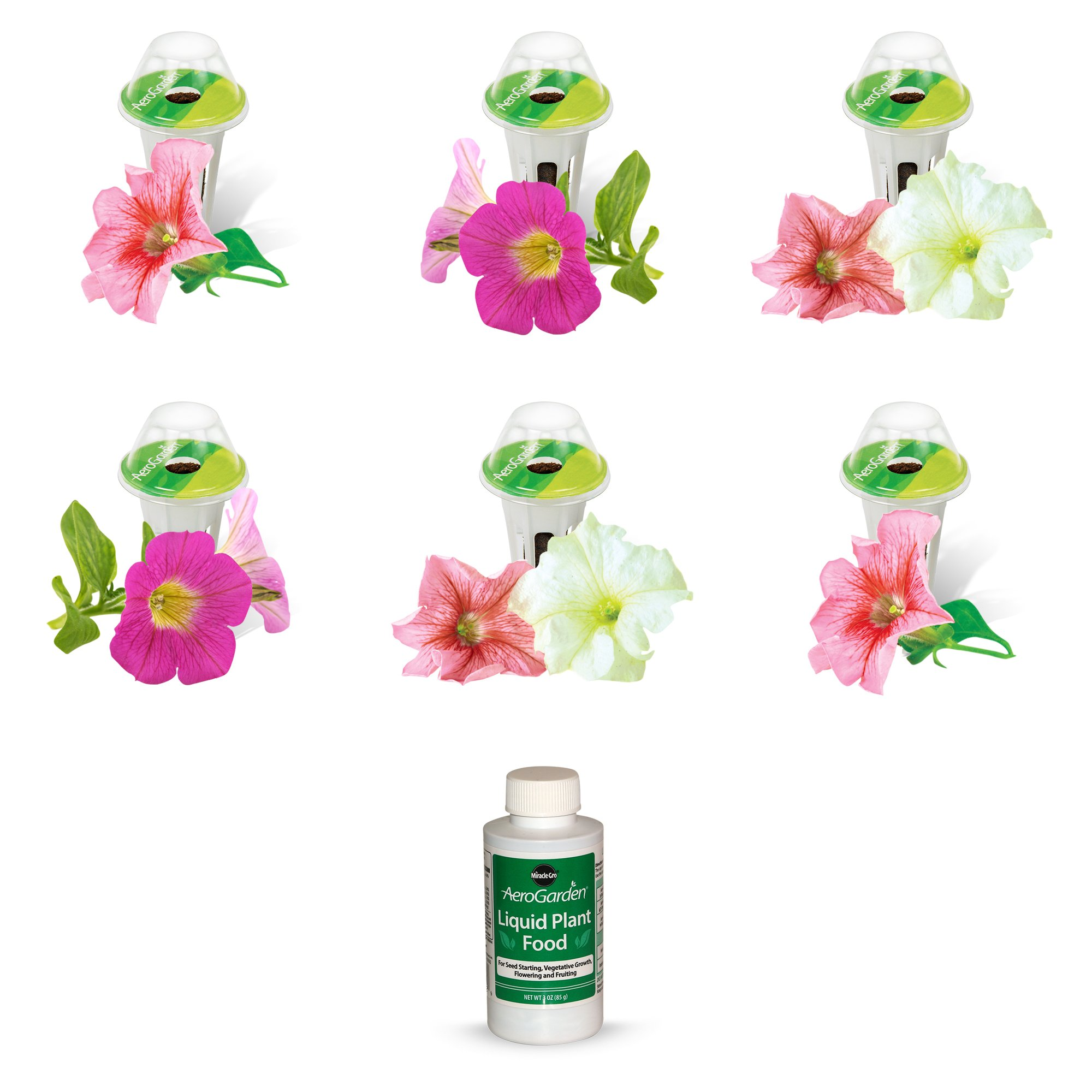 AeroGarden Cascading Petunia Seed Pod Kit (6-Pod)