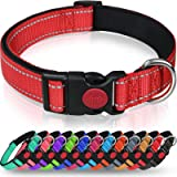 Taglory Reflective Dog Collar with Safety Locking Buckle, Adjustable Nylon Pet Collars for Large Dogs, Red