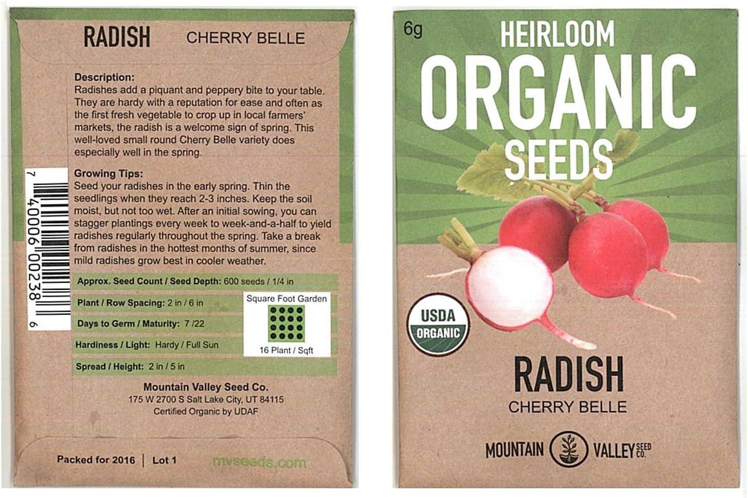 Organic Cherry Belle Radish Seeds - 6 Gram Seed Packet - Heirloom Garden Seeds, Non-GMO, AAS Winner - Vegetable Gardening and Micro Greens