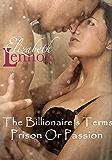 The Billionaire's Terms: Prison Or Passion