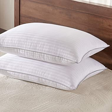 Basic Beyond Down Alternative Queen Size Bed Pillows - 2 Pack Hotel Collection Hypoallergenic Super Soft Firm Pillow for Sleeping, 20x30