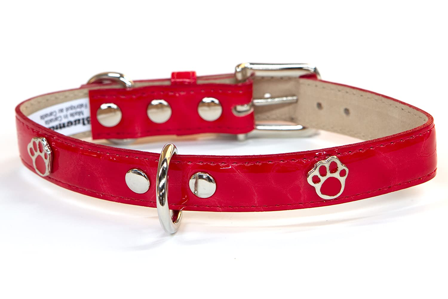 blueemax Italian Synthetic Turtle Shell Print Dog Collar with Paw Stud, 1-Inch by 18-Inch, Red