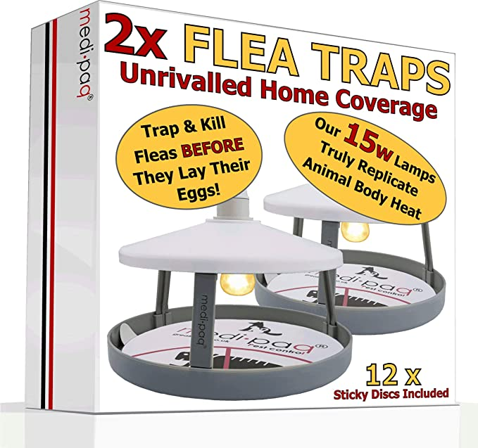 48x ULTIMATE FLEA TRAPS By Medipaq 148 Sticky Discs The ONLY 48 Enchanting How To Get Rid Of Fleas On Furniture Concept