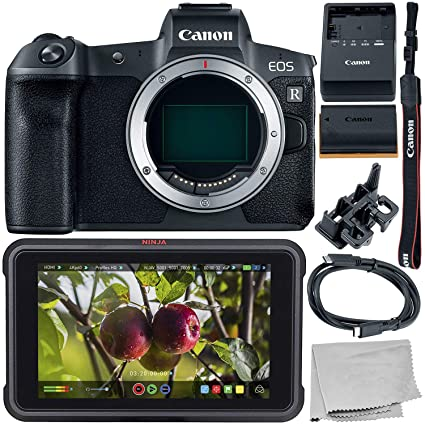 Amazon.com : Canon EOS R Mirrorless Digital Camera (Body ...