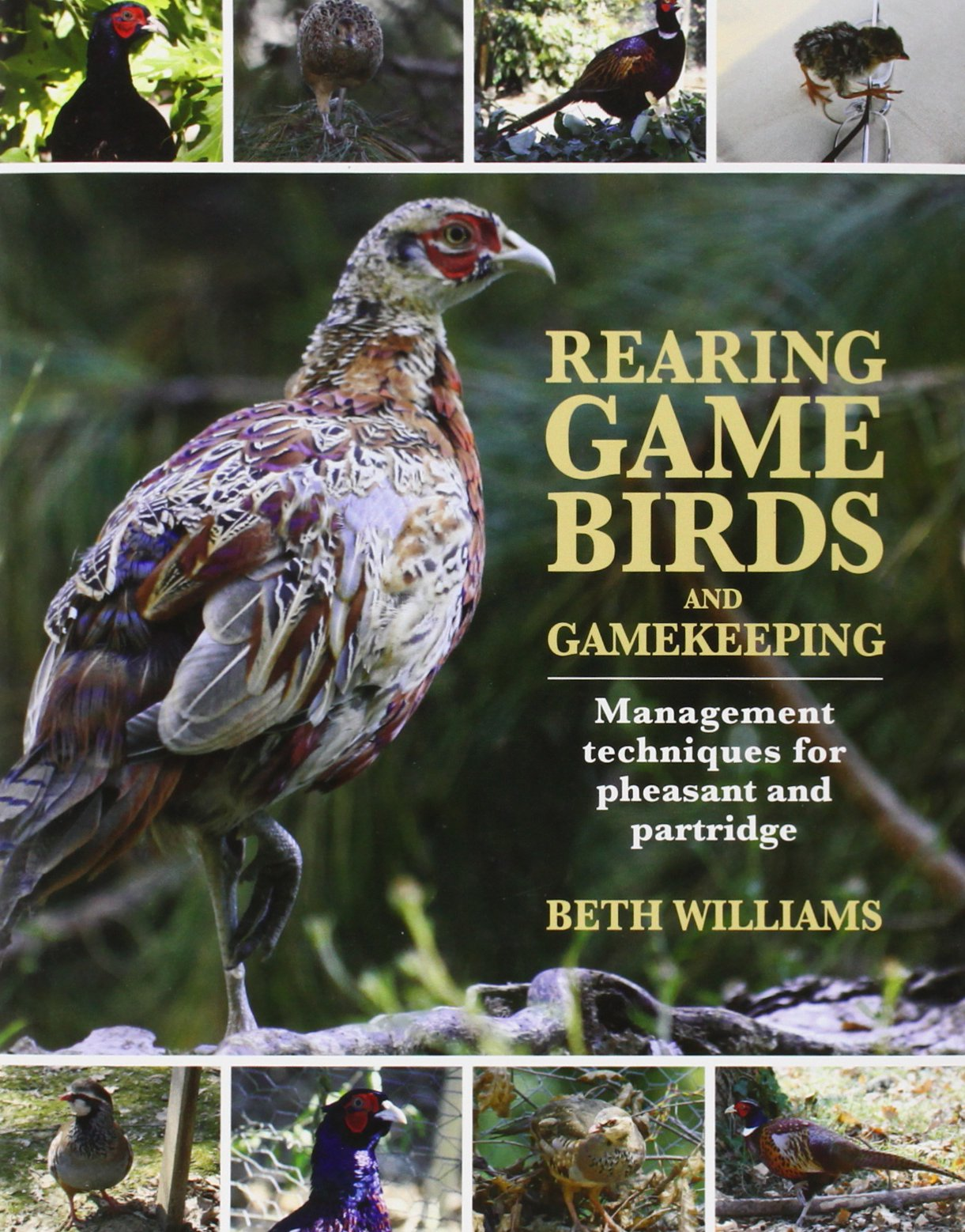 Download Rearing Game Birds and Gamekeeping: Management Techniques for Pheasant and Partridge ebook