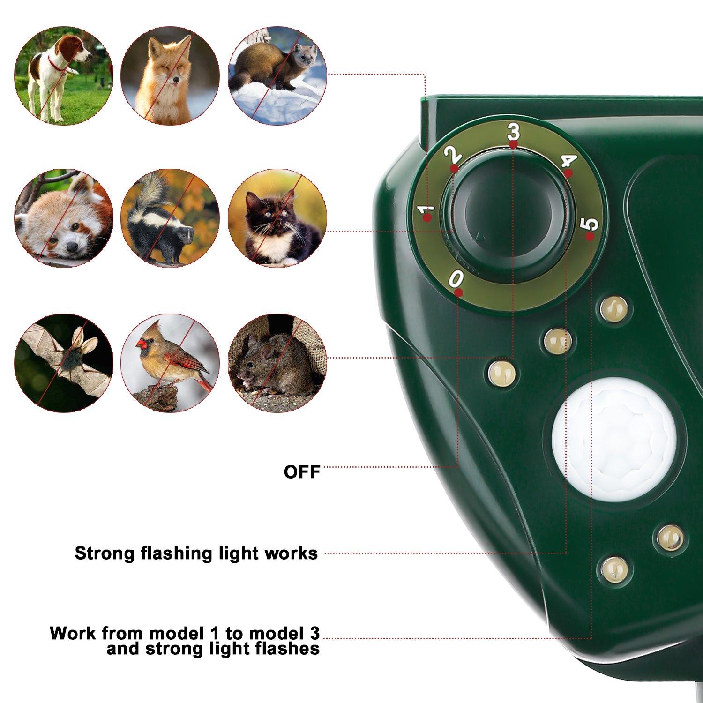 AUTSCA Repelente de gatos, repelente ultrasónico para animales, con LED, Carga solar, ristente al agua, Uso en exteriores, Tierra de Jardinería y de ...