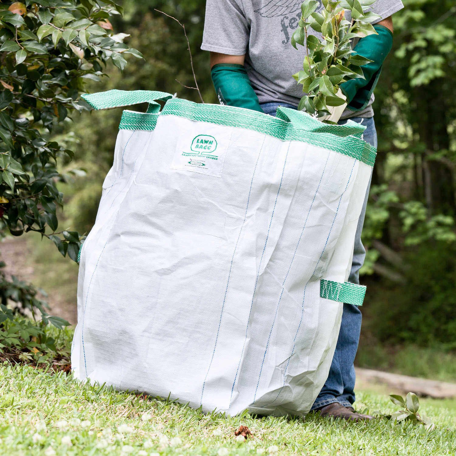 Lawn Bagg 10-Cubic-Foot Capacity (75 Gallons), 24 x 24 x 30-inches by A.M. Leonard